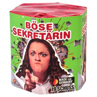 Lesli Böse-Sekretärin