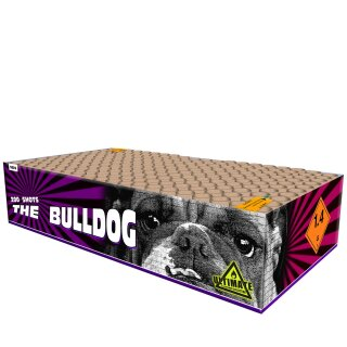 Katan The Bulldog